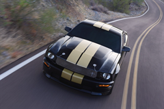 2006 Shelby GT